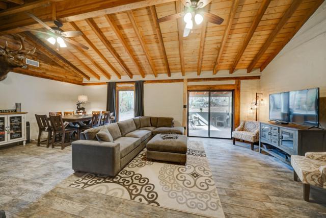 3764 N Mohawk Street, Pine, AZ 85544 (MLS #5902472) :: Yost Realty Group at RE/MAX Casa Grande