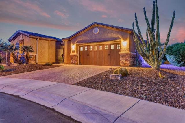 13088 W Desert Vista Trail, Peoria, AZ 85383 (MLS #5907458) :: CC & Co. Real Estate Team