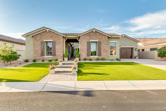 2500 E Ravenswood Drive, Gilbert, AZ 85298 (MLS #5923001) :: The Kenny Klaus Team