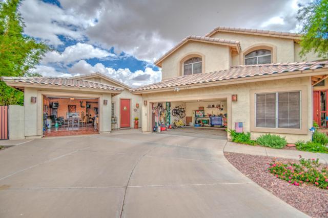 4628 E Enrose Circle, Mesa, AZ 85205 (MLS #5929788) :: Riddle Realty