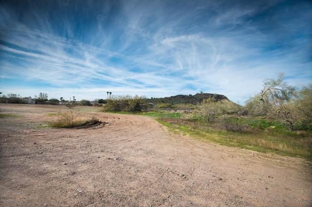 19810 N 38TH Avenue, Glendale, AZ 85308 (MLS #6026839) :: Homehelper Consultants