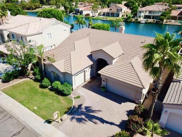 1441 E Catamaran Drive, Gilbert, AZ 85234 (MLS #6076420) :: The Bill and Cindy Flowers Team