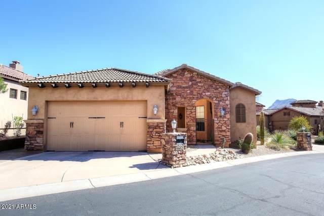 11657 N 134TH Street, Scottsdale, AZ 85259 (MLS #6193376) :: Yost Realty Group at RE/MAX Casa Grande