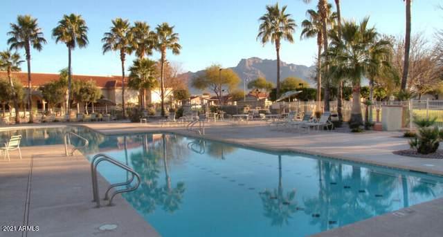 3301 S Goldfield Road #1027, Apache Junction, AZ 85119 (MLS #6230288) :: Selling AZ Homes Team