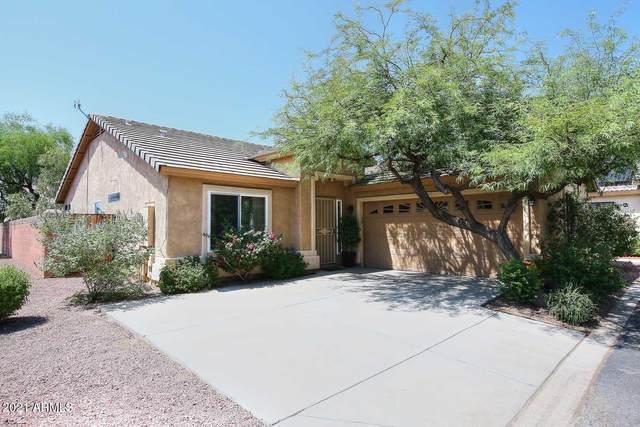 3324 E Tierra Buena Lane, Phoenix, AZ 85032 (MLS #6284475) :: Elite Home Advisors