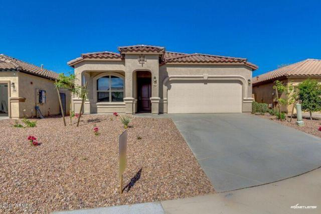 29982 N 120TH Drive, Peoria, AZ 85383 (MLS #5652179) :: Occasio Realty