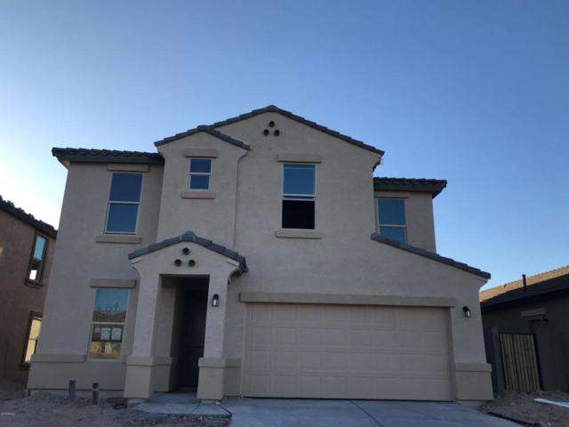 29940 N 120TH Drive, Peoria, AZ 85383 (MLS #5655594) :: Occasio Realty