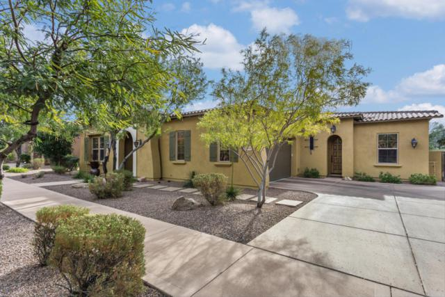 9441 E Canyon View Road, Scottsdale, AZ 85255 (MLS #5665727) :: The Wehner Group