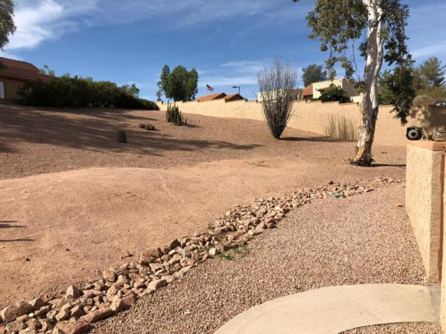 14420 N Teakwood Lane, Fountain Hills, AZ 85268 (MLS #5721182) :: Brett Tanner Home Selling Team
