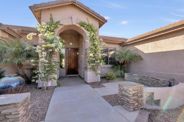 39677 N Foxtail Lane, San Tan Valley, AZ 85140 (MLS #5751617) :: The Jesse Herfel Real Estate Group