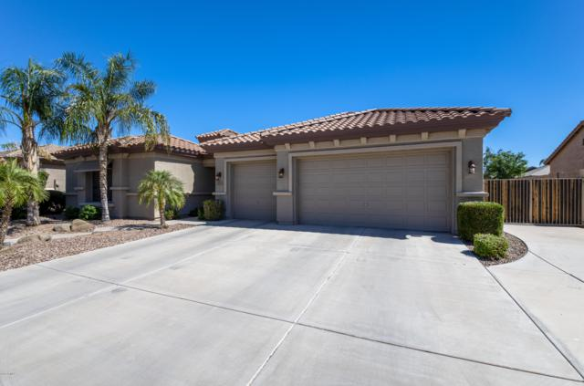 2822 E Winged Foot Drive, Chandler, AZ 85249 (MLS #5763991) :: The W Group