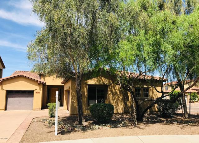 2138 E Desert Drive, Phoenix, AZ 85042 (MLS #5778856) :: Lucido Agency