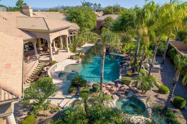 3925 E Norcroft Circle, Mesa, AZ 85215 (MLS #5850548) :: Devor Real Estate Associates