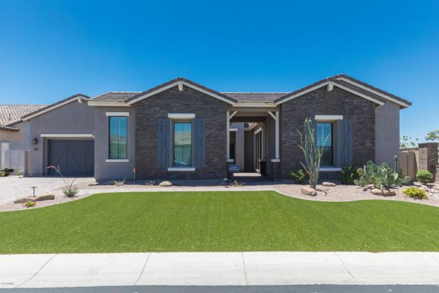 2507 E Vallejo Drive, Gilbert, AZ 85298 (MLS #5879003) :: The Kenny Klaus Team