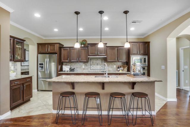 12926 W Katharine Way, Peoria, AZ 85383 (MLS #5913340) :: The Daniel Montez Real Estate Group