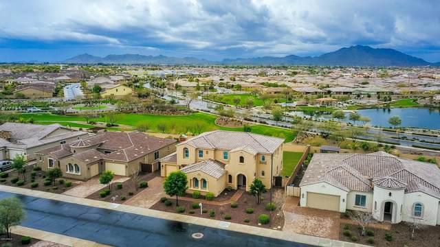 3723 E Cassia Lane, Gilbert, AZ 85298 (MLS #6051408) :: Revelation Real Estate