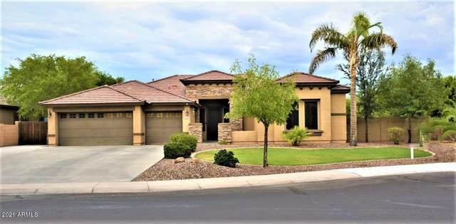 845 N Thunderbird Avenue, Gilbert, AZ 85234 (MLS #6257396) :: Yost Realty Group at RE/MAX Casa Grande