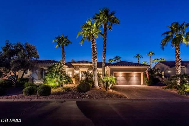 22926 N De La Guerra Court, Sun City West, AZ 85375 (MLS #6285424) :: Elite Home Advisors