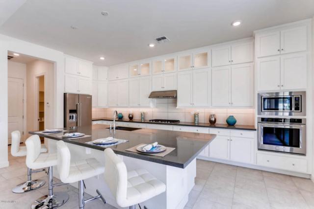 3815 E Crescent Place, Chandler, AZ 85249 (MLS #5706942) :: Lifestyle Partners Team