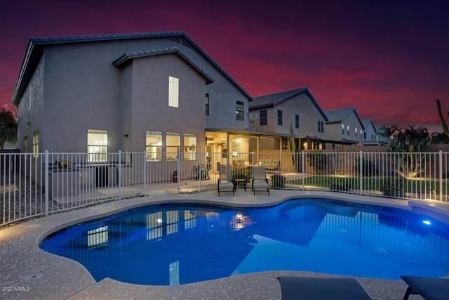 23239 N 121ST Drive, Sun City, AZ 85373 (MLS #6059793) :: REMAX Professionals
