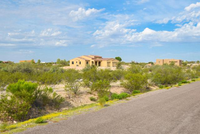 21795 W El Grande Trail, Wickenburg, AZ 85390 (MLS #5782214) :: The Wehner Group