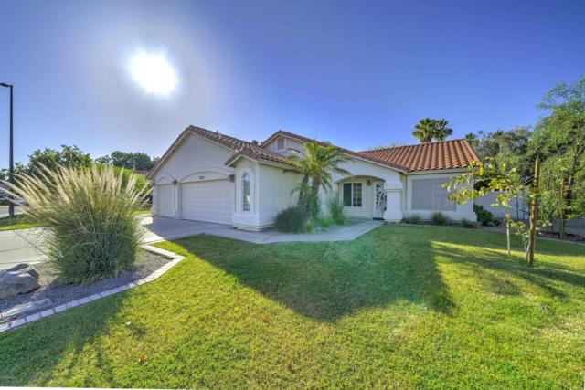 2225 E Santa Cruz Drive, Gilbert, AZ 85234 (MLS #5933196) :: Relevate | Phoenix