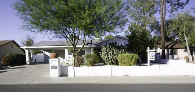 3622 W Dahlia Drive, Phoenix, AZ 85029 (MLS #6148928) :: The Daniel Montez Real Estate Group