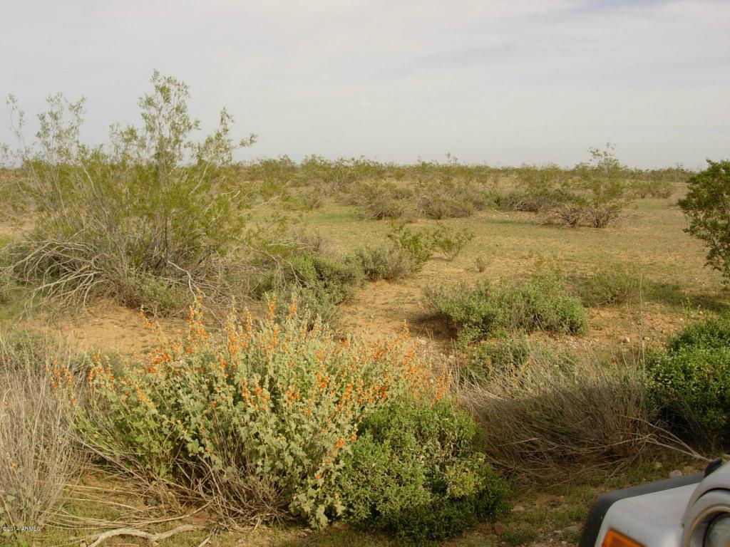 Lot-2A 3 PEAKS RANCH Road - Photo 1