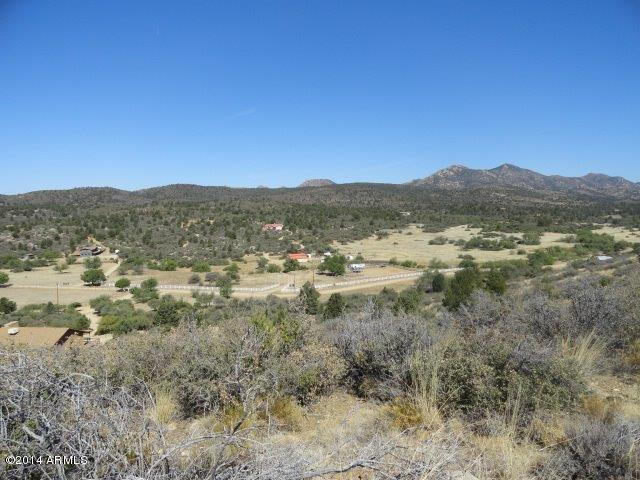 17850 S Tawny Lane S, Peeples Valley, AZ 86332 (MLS #5175878) :: Yost Realty Group at RE/MAX Casa Grande