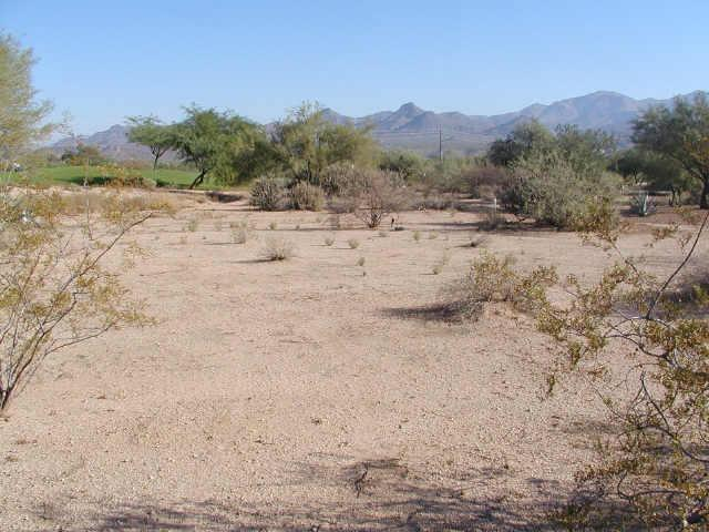19034 E Box Bar Trail, Rio Verde, AZ 85263 (MLS #5183622) :: Lifestyle Partners Team