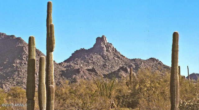 9250 E Mariposa Grande Drive, Scottsdale, AZ 85255 (MLS #5217230) :: Lifestyle Partners Team