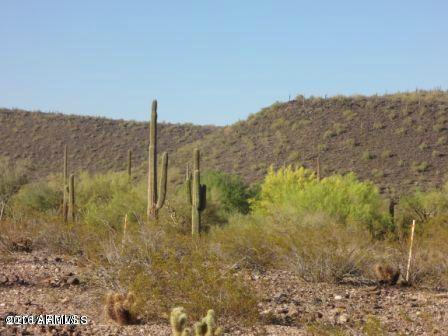 30545 N Sage Drive, Peoria, AZ 85383 (MLS #5416897) :: Occasio Realty