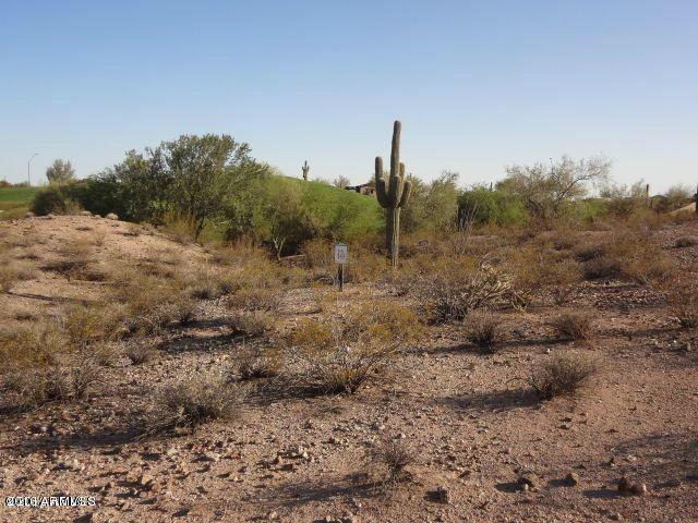 30319 N Sage Drive, Peoria, AZ 85383 (MLS #5419434) :: Occasio Realty