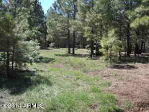 2997 Old Rim Road, Forest Lakes, AZ 85931 (MLS #5453550) :: My Home Group