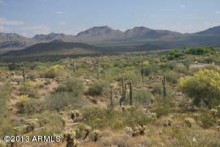 20000 Laurel Lane, Fort McDowell, AZ 85264 (MLS #5465776) :: Kortright Group - West USA Realty