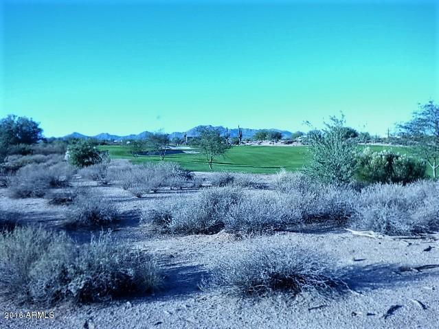 17456 E Bushy Mountain Court, Rio Verde, AZ 85263 (MLS #5522349) :: The Garcia Group @ My Home Group