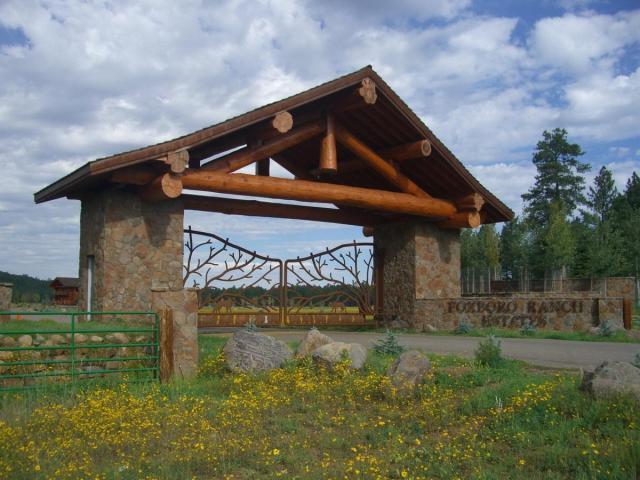 17560 S Osprey Circle, Munds Park, AZ 86017 (MLS #5572244) :: Lifestyle Partners Team