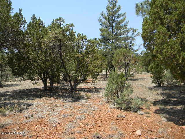 2760 Jaguar Circle, Overgaard, AZ 85933 (MLS #5577980) :: Riddle Realty Group - Keller Williams Arizona Realty