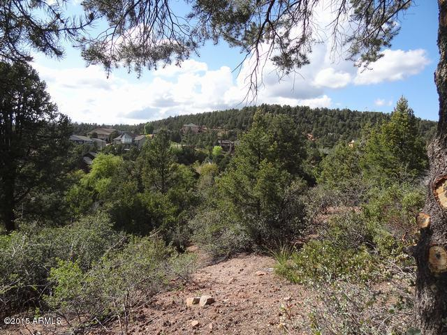 607 N Woodhill Road, Payson, AZ 85541 (MLS #5599496) :: The W Group