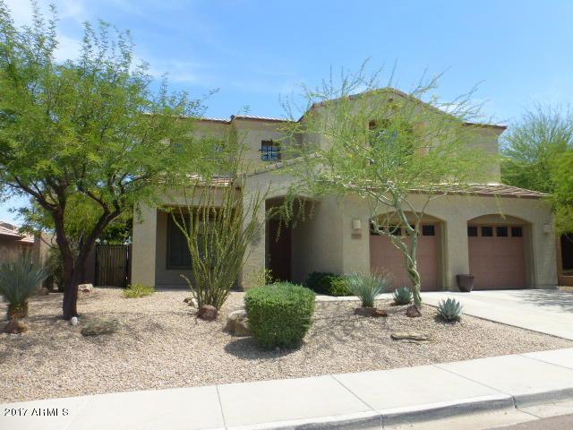 8503 W Desert Elm Lane, Peoria, AZ 85383 (MLS #5616429) :: The Laughton Team