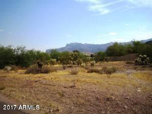 6000 S Kings Ranch Road, Gold Canyon, AZ 85118 (MLS #5622249) :: The Bill and Cindy Flowers Team
