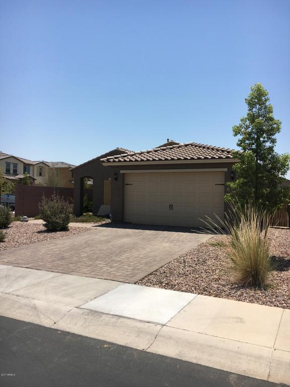 2663 E Hickory Street, Gilbert, AZ 85298 (MLS #5624549) :: Sibbach Team - Realty One Group
