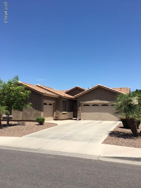 142 W Hawk Way, Chandler, AZ 85286 (MLS #5625036) :: RE/MAX Home Expert Realty