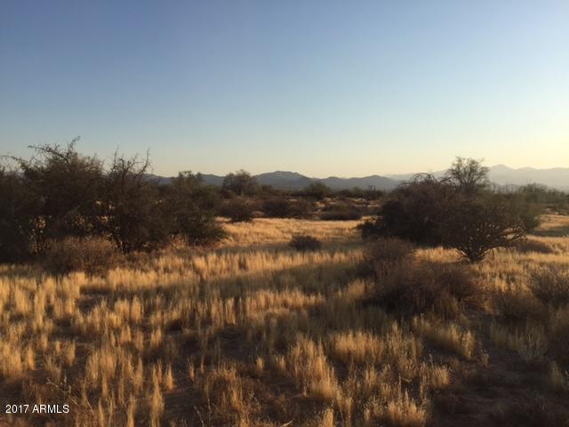 290XX N 171st Street, Rio Verde, AZ 85263 (MLS #5625340) :: Desert Home Premier