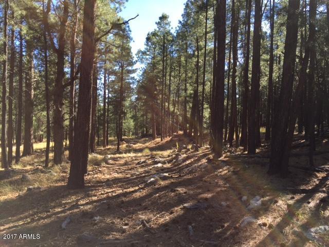 0 Fr 56, - Ranch 2 Road, Forest Lakes, AZ 85931 (MLS #5625791) :: Brett Tanner Home Selling Team