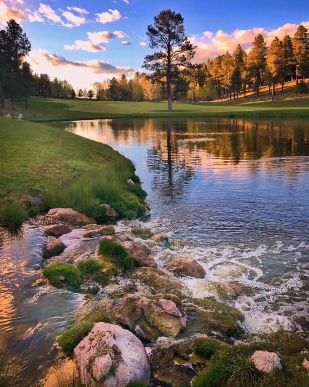 1600 E Castle Hills Drive, Flagstaff, AZ 86005 (MLS #5626391) :: Brett Tanner Home Selling Team