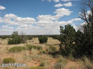 Sec 19 T15n,R16e, Nw4,Nw4 &Sw4,Nw4 Cr, Heber, AZ 85928 (MLS #5631908) :: The Wehner Group