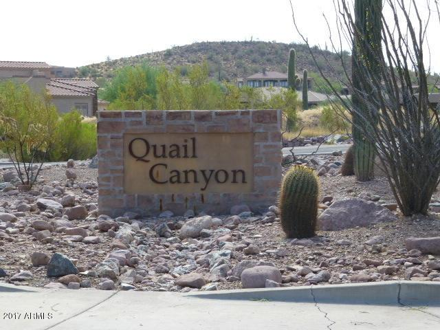 9046 E Canyon Creek Drive, Gold Canyon, AZ 85118 (MLS #5632436) :: The Pete Dijkstra Team
