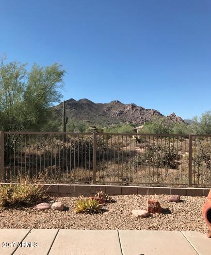 6516 E Night Glow Circle, Scottsdale, AZ 85266 (MLS #5636605) :: Desert Home Premier
