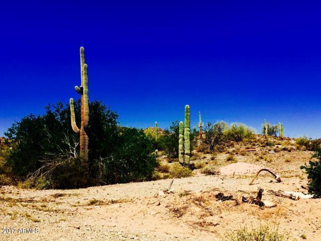 000 N Homestead Lane, Queen Creek, AZ 85142 (MLS #5637598) :: Revelation Real Estate